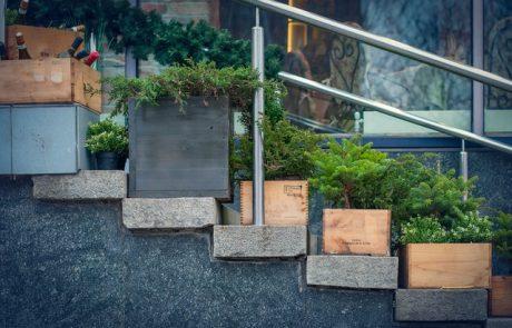 צמחיה מלאכותית לעיצוב חלל הבית